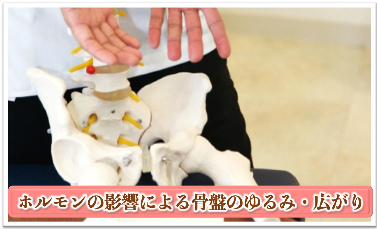 産後骨盤矯正の必要性|ホルモンによる骨盤の緩み